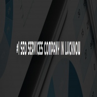 Best SEO Company in Lucknow  SEO Services in Lucknow  Digital Search